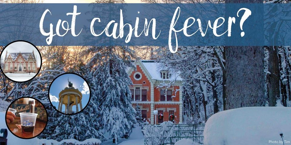 Cabin Fever New Ulm